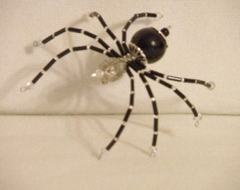 Big Black Spider!!