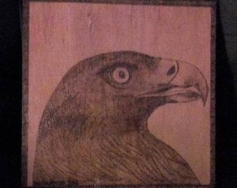 Golden Eagle pyrography picture