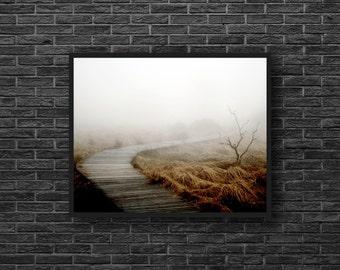 Misty Path Photo - Pathway Photo - Road Photo - Nature Photo - Swamp Photo - Autumn Wall Art - Nature Wall Decor - Living Room Decor