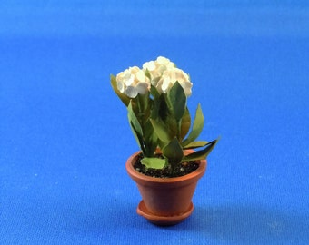 Dollhouse Miniature Accessory; White Geraniums potted; twelfth scale; 1:12 scale.  Item #D119. Plants and Flowers.