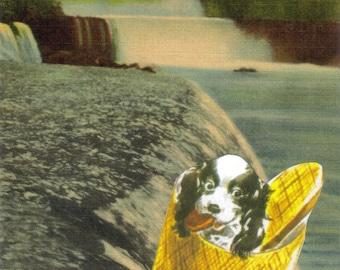 Original Art, Niagara Falls Postcard Artwork, Waterfall Art, Funny Cute Dog, Crazy Daredevil, Retro Collage on Paper