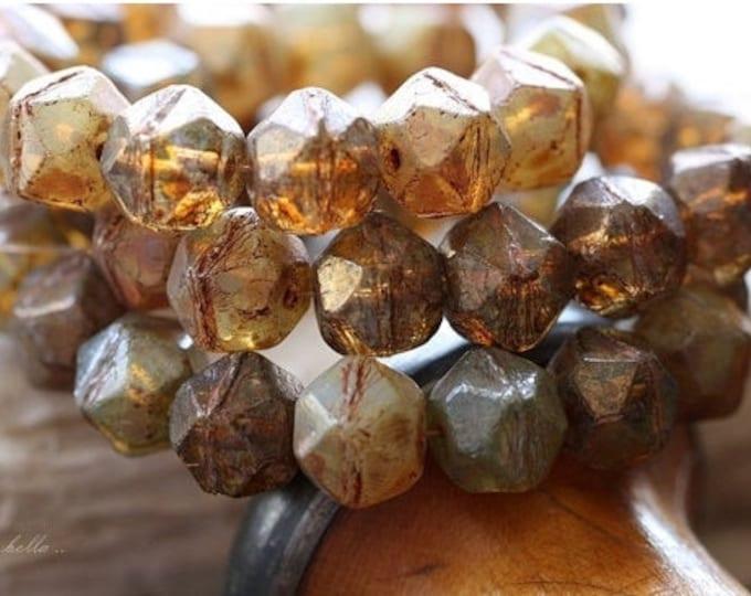 EARTHY TREASURE MIX .. 15 Picasso Czech Glass English Cut Beads 10x9mm (4635-st)