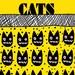 Art POSTER . . . BLACK CATS, No. 3155
