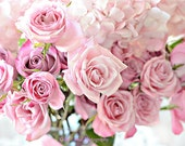 Roses Photography, Pink Shabby Chic Roses Photos, Paris Roses Print, Dreamy Pink Roses Print, Baby Girl Nursery Decor, Pink Roses Wall Decor