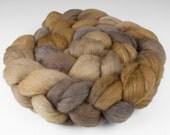 Polwarth Silk Top, Handpainted, 4 oz., Flicker Colorway