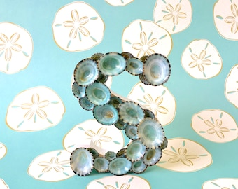 "Beach Decor - Seashell Letter with Natural Blue Green Limpet Shells  5"" H - If ordering more than one, indicate letters in 'Note to Seller'"