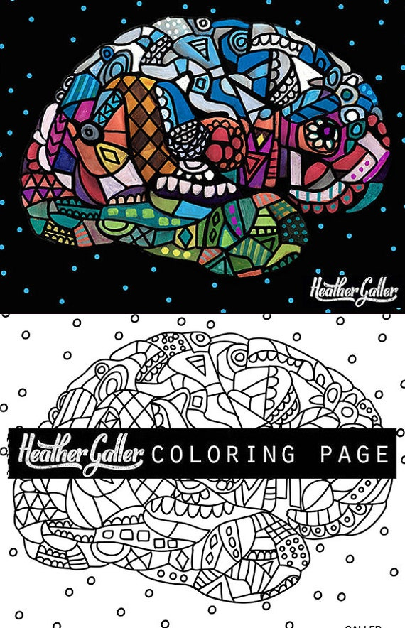 50 Off Bolte Brain coloring Anatomy coloring book adult