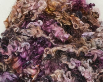 Wensleydale Long Wool Locks for Spinning and Felting Fiber- Colorway Trifle