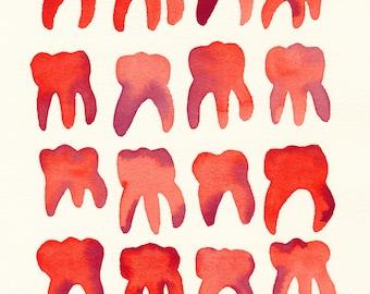 Red Molars. An original dental watercolor painting.