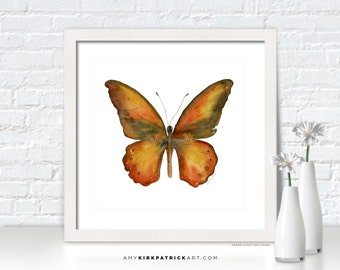 Orange Butterfly Painting, Butterfly Art, Butterfly Print, Original Butterfly Watercolor, Butterfly Greeting Cards, 85 Lydius Butterfly