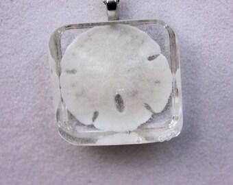 Beach Jewelry, Sand Dollar Jewelry, Seashell Jewelry - Real Sand Dollar Embedded Resin Pendant, Real Sand Dollar Necklace, Nautical Jewelry