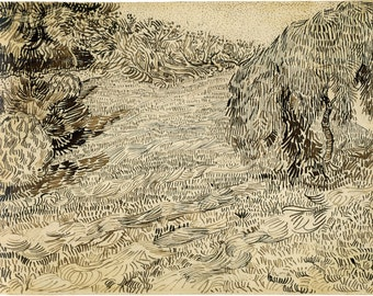 Van Gogh Reproduction.  A Corner of a Garden in the Place Lamartine - For Theo 1888 by Vincent van Gogh, Fine Art Print.