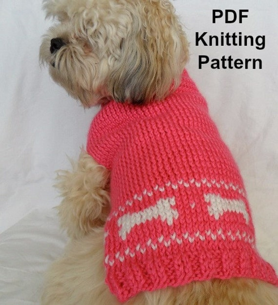 Cute dog sweater knitting pattern pdf small dog sweater - Knitting for dogs sweaters ...