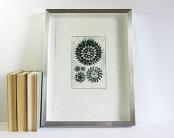 Starburst Medallions - Original Etching Print - 13x17 Silver Frame - Black and White Contemporary Art - Modern Wall Decor - Fibonacci Spiral