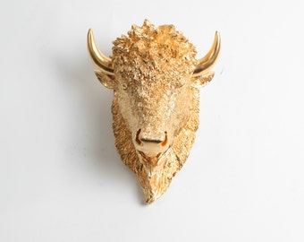 Small Bison Head Wall Mount, The SMALL Owen - Gold Resin Bison Head- Buffalo Resin by White Faux Taxidermy