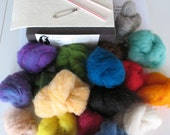 Needle Felting Kit Beginner Starter Basic Intro 22 colors Wool Complete Instructions Ships from USA
