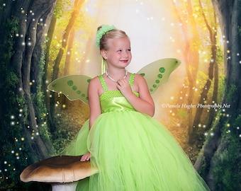 Tinkerbell tutu costume, fairy tutu dress, Tinkerbell tutu dress, wings and halo