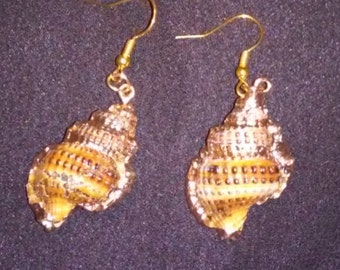 SET  Trumpet Sea Shell with Yellow Gold 1 3/4 inch Pendant Necklace and matching Earrings   Sea Shell Pendant and Earrings