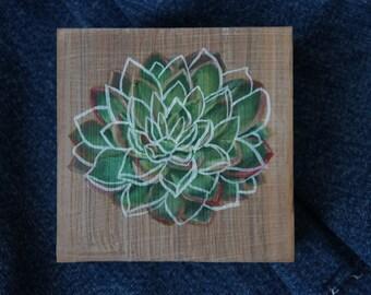 """Succulent oil painting 4"""" x 4"""" original artwork"""