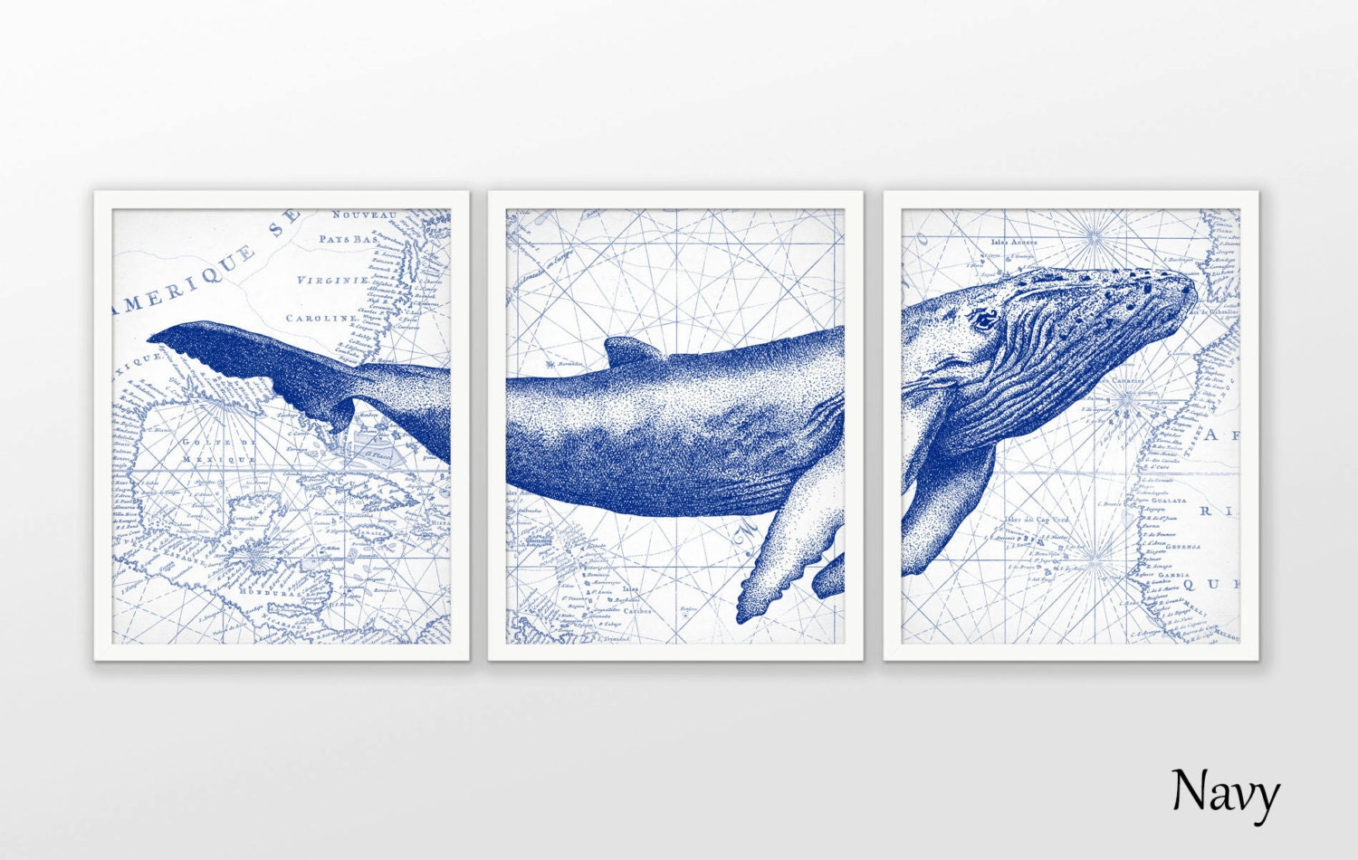 Humpback Whale Wall Art Poster Set Of 3 Whale Art Print