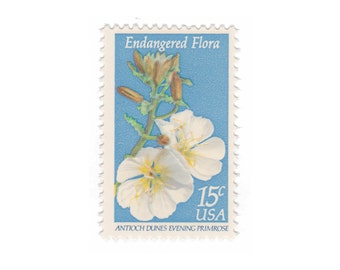 10 Unused Vintage Postage Stamps - 1979 15c Endangered Flora Primrose - Item No. 1786