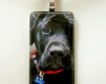 Black Lab puppy pendant and chain - DGP02-333