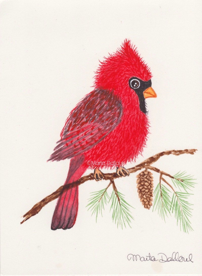 cardinal bird art gift for women red cardinal original