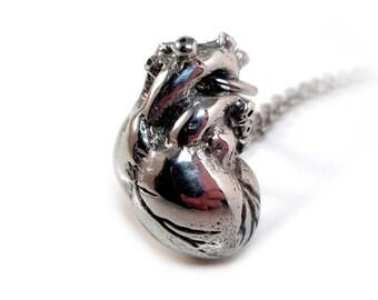Polished Anatomical Heart Necklace Human Heart Anatomy Pendant Jewelry