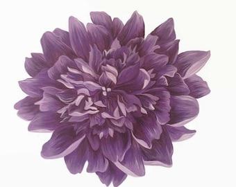 Peony Print, Flower Print, Purple Peony Painting, Purple Flower, Flower Painting, Flower Art, Peony Painting, Peony Artwork, Floral Art