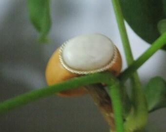 Olive wood Moonstone cabochon wood ring size 9 1/2