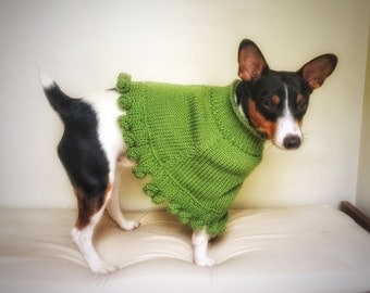 Crochet Knit Dog Poncho Cat Cape Unique Handmade Green Photo Prop Rose Buds