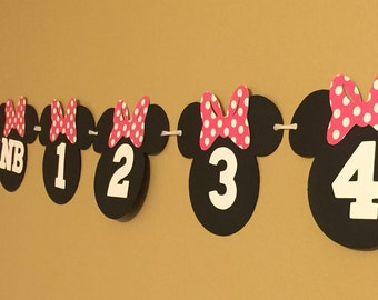 12 Month Photo Prop Banner | Monthly Grown Banner | Minnie Mouse 1st Birthday Party Decorations