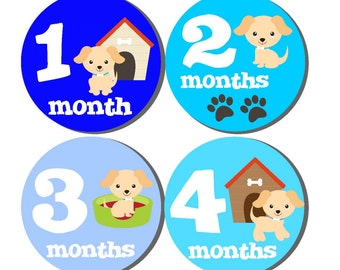 Milestone Baby Month Stickers- 12 month stickers- Monthly Stickers- Milestone Sticker- Baby Month Stickers- Baby Boy Month Stickers- B16