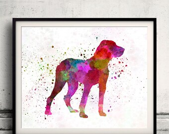 Ariege Pointer 01 in watercolor - Fine Art Print Glicee Poster Decor Home Watercolor Gift Illustration Dog  - SKU 2212