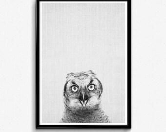 Owl Art Printable, Owl Wall Print, Woodland Owl Print, Bathroom Funny Decor, Funny Coworker Gift, Forest Animal, Funny Dorm Wall Art, Owl