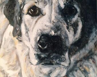 Custom Pet Portrait Painting Examples