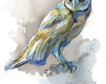 Barn owl watercolor art nature print in multiple sizes