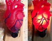 Anatomical Heart Nightlight