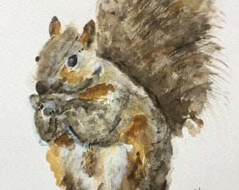SQUIRREL 11 x 14 original watercolor painting by Donna Harris