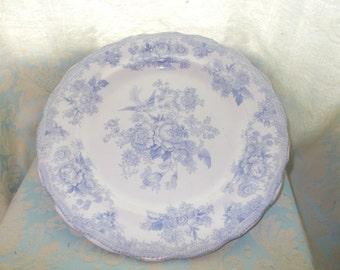 1900 dinning platter