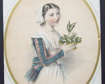 Illustration Lily of The Valley