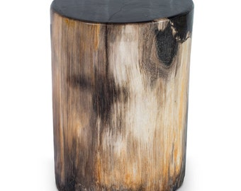 Hollywood Petrified Wood Stool