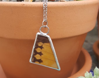 Yellow and Brown Butterfly Wing Pendant