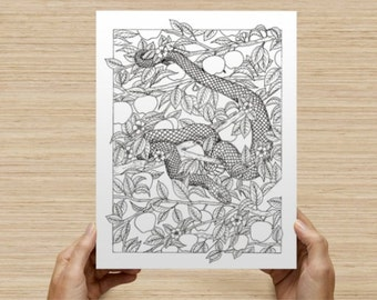 Adult coloring pages - 2 Coloring pages from UNTAMED - relax and color - by Rex Findley