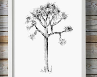 Joshua Tree art - Pencil drawing - Giclee print -  nature Decor  - Joshua Tree sketch - pencil Zen drawing Tree illustration