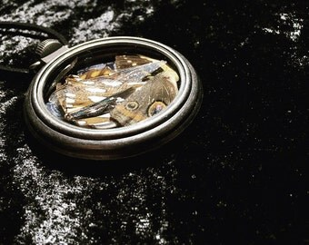 Butterfly, Dragonfly & Moth Wing Locket