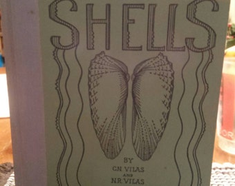 Vintage Florida Marine Shells Collector Reference Book with Plate Photos