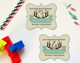 Mint Green Brown Deer Monthly Milestone Stickers or Iron Ons, Baby Boy Monthly Iron Ons
