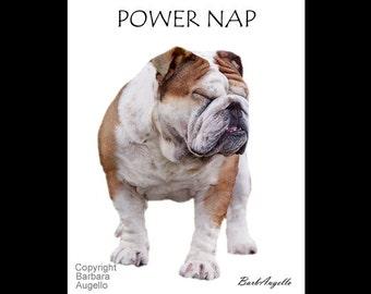 English Bulldog, English Bulldog Metal Art Print, English Bulldog Gift, Bulldog