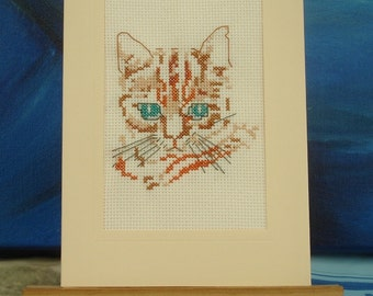 Cat embroidered card for all occasions